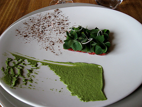 Mosc oxe Tartar and Wood Sorrel