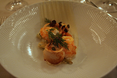 Scallops and langoustines