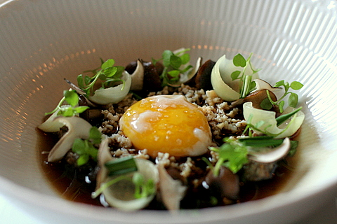 Birch wine bouillon, poached egg and mushrooms