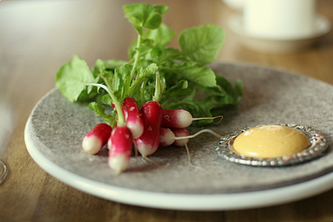 Radish and eggs (?) cream