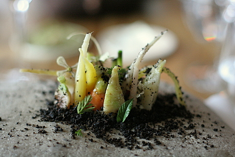 Very Good Food - Noma - Vegetable Field