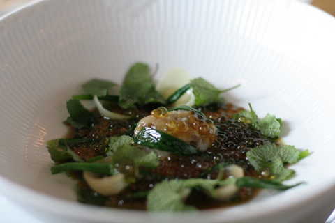Ramson onion and onions from Læsø, onion-cress and onion bouillon