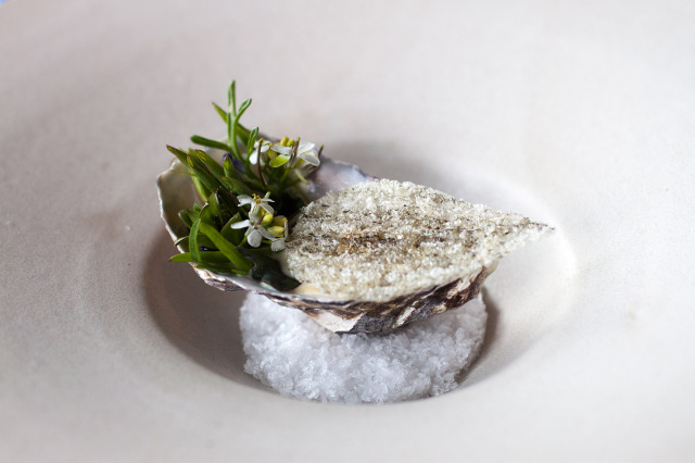Oyster, beach plants, fish skin and fermented cabbage