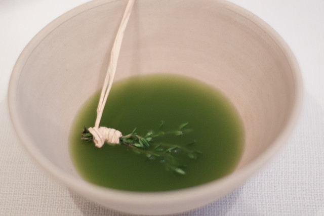 Lemon verbena soup - AOC