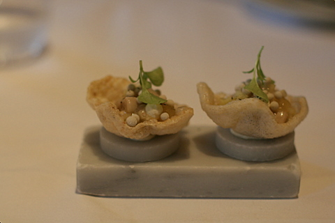 Oyster cracker, salad of oyster, apple and fennel