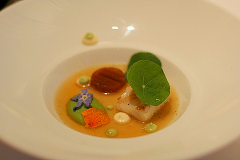 Turbot with cream of green peas, fish stock, aioli and churros
